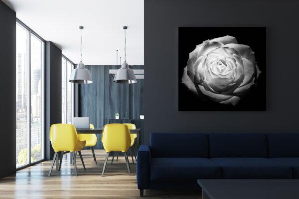 Infrared Rose Mockup