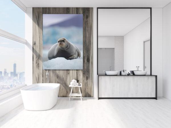 Bearded Seal Portrait Mockup