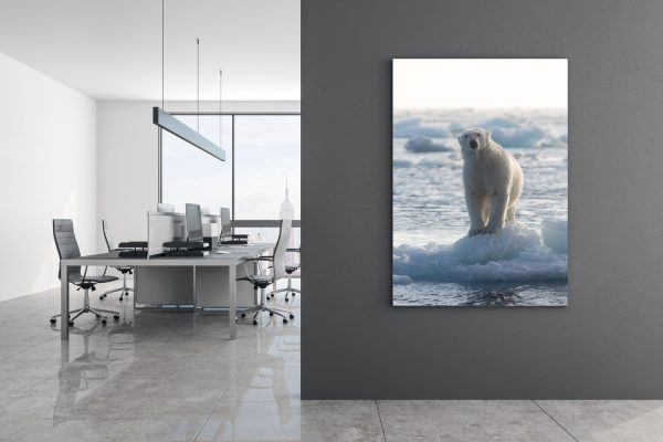 Polar Bear Encounter Mockup