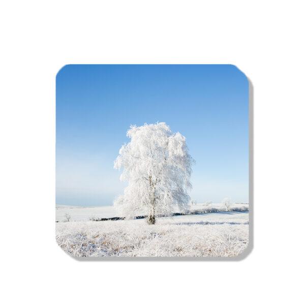 Frosty Tree Coaster