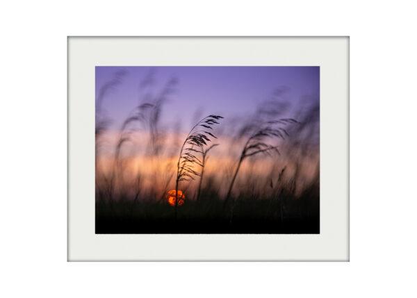 A3 Mockup _ Summer Meadow