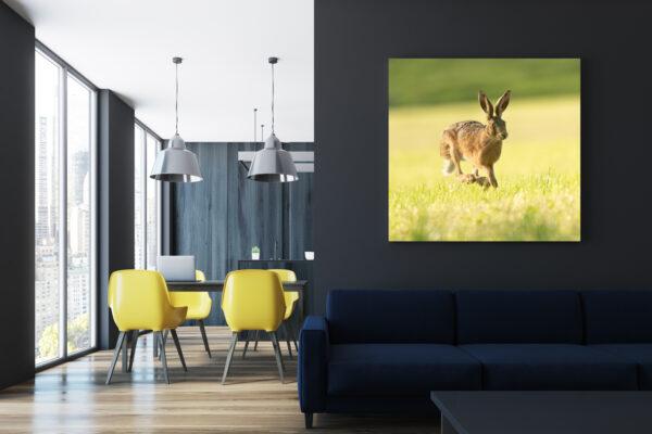 Hare Run I Mockup